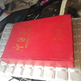 中医正骨2008年第二十卷合订本