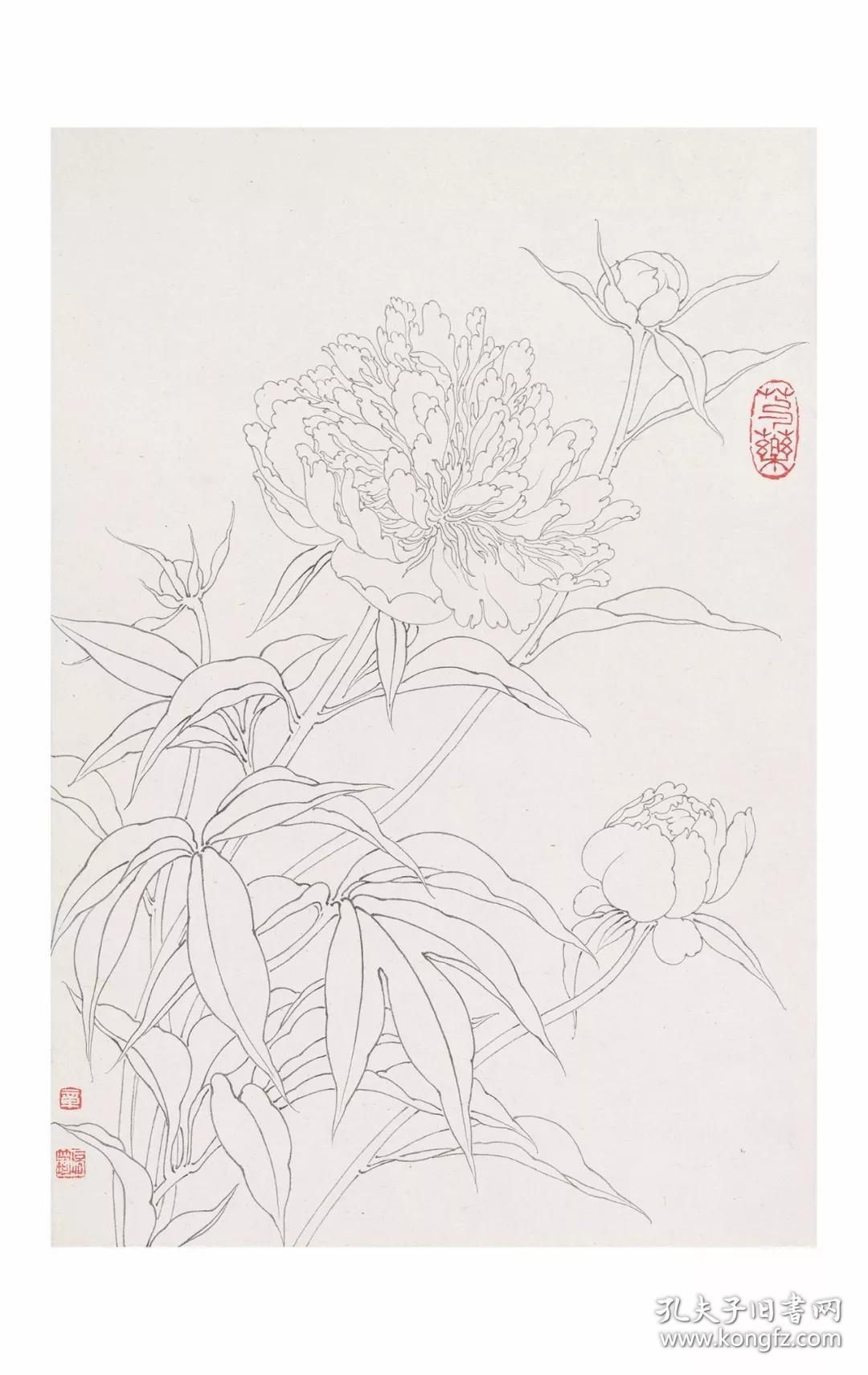 中国美术学院中国画系藏品集 章培筠白描花鸟作品集图片