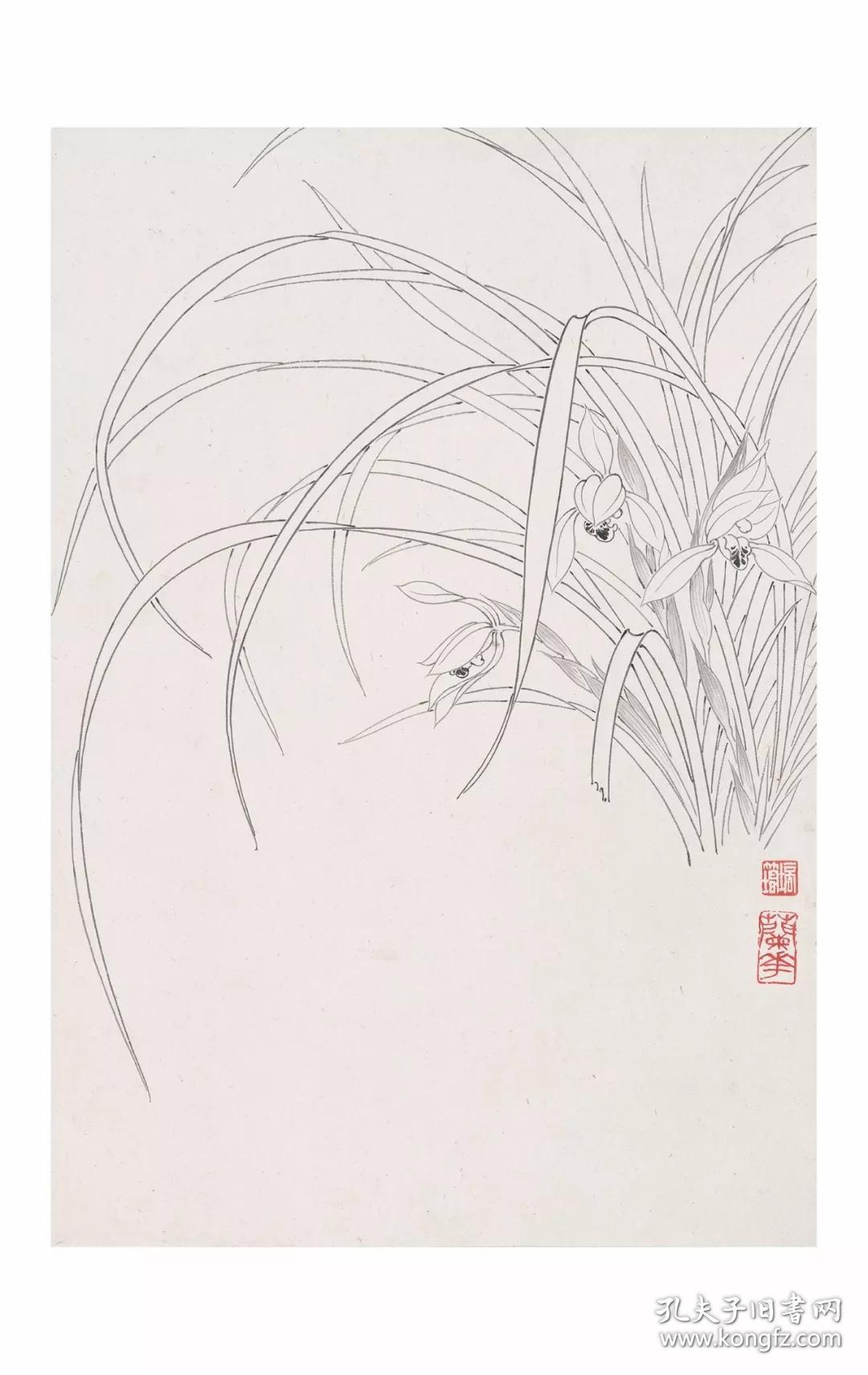 章培筠白描花鸟作品集 / 附工笔花鸟画教材二,白描花卉图片