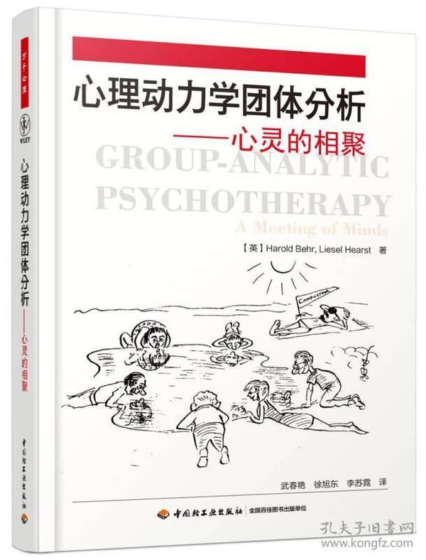 心理动力学团体分析:心灵的相聚:a meeting of minds