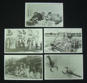 民国时期-民俗明信片!《北支之风俗》 5枚 (吸食鸦片、满洲高跷、小驴拉水车、葬礼、支那名物-毒蝎子!) 珍稀  民国老明信片!