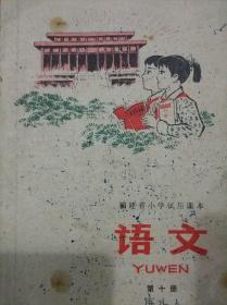 福建省小学试用课本 语文 第十册