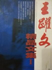 王跃文精品文集1