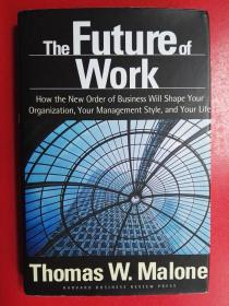 The Future of Work:How the New Order of Business Will Shape Your Organization, Your Management Style and Your Life