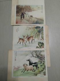 【民国画片】5张,两张熊猫画片和1张广东七星岩宣传画也是五六十年代,具体年代不详,合集,