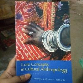 Core Concepts in Cultural Anthropology 英文原版 馆藏 现货