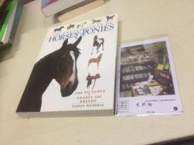 英文原版 the encyclopedia of Horses Ponies 马匹小马百科全书  【存于溪木素年书店】