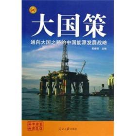 大国策.通向大国之路的.中国能源发展战略