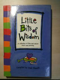 Little Bits of Wisdom: A Collection of