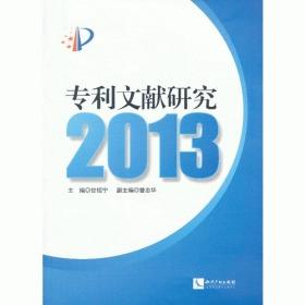 专利文献研究(2013)