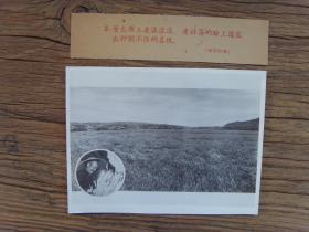 老照片:【※1959年,甘肃省庆阳市,董志塬上麦浪滚滚,老社员喜获丰收※】