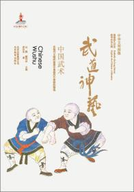 中华文明探微·武道神艺:中国武术