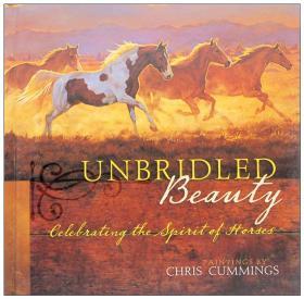 马的绘画 无与伦比的美unbridled beauty动物风景手绘