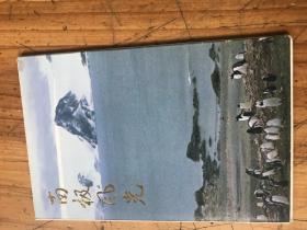 2358:86年第一版《南极风光》明信片10张一套全