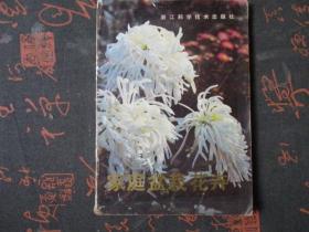 家庭盆栽花卉