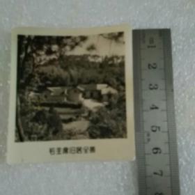 老照片;毛主席旧居全景