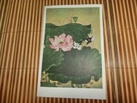 1957年 《荷花水禽》 陈佩秋作 一张