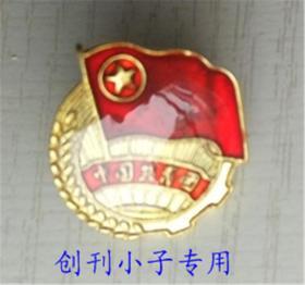 中国共青团员团徽胸牌 胸章 徽章蝴蝶扣10个7.6元包邮