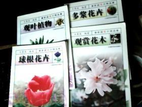 家庭花卉精品 观赏花木、观叶植物、多浆花卉、球根花卉        7J
