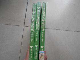 中国常见蜻蜓图说