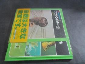 科学のアルバム 10:アカトンボの一生 日文原版
