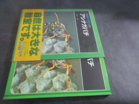 科学のアルバム 43:アツナガバチ 日文原版