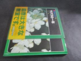 科学のアルバム 38 日文原版