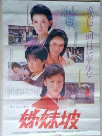 中国经典年画宣传画电影海报大展示------全开------《姊妹坡》----摄影版-----虒人荣誉珍藏