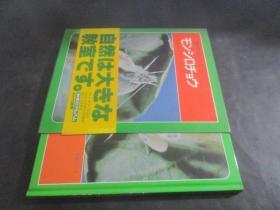 科学のアルバム 2 日文原版