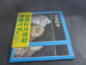 科学のアルバム 64 日文原版