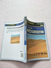 生活在沙漠岩石中的动物[实物图片】