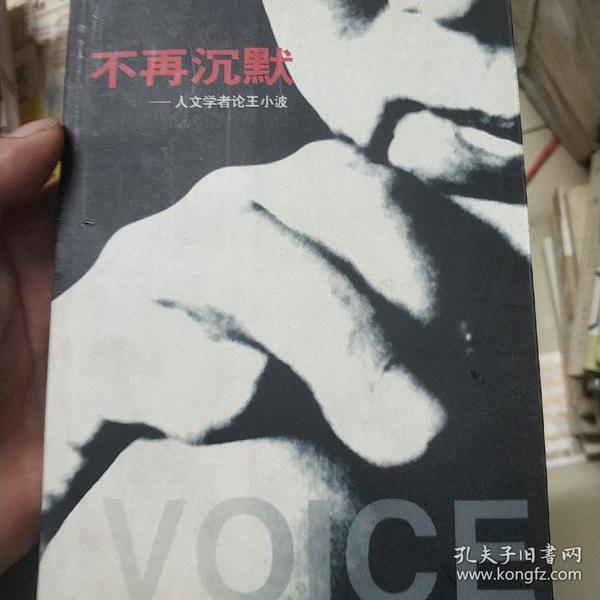 不再沉默-人文学者论王小波