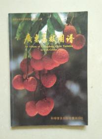 广东荔枝图谱 广东省荔枝协作组赠送本