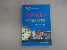 两极鸿沟 ?:当代中国 的贫富阶层