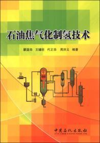 石油焦气化制氢技术