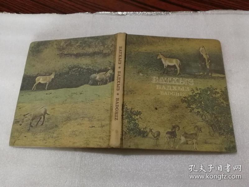 外文原版彩色图册(硬精装)
