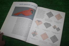 Advanced Origami 高级折纸艺术 纸艺手工 英文原版