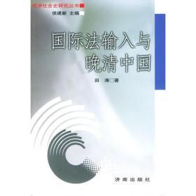 国际法输入与晚清中国——经济社会史研究丛书