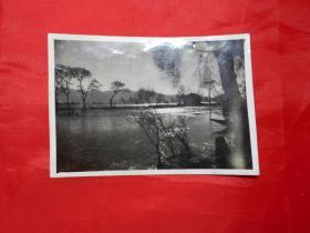 老照片:河水静静流