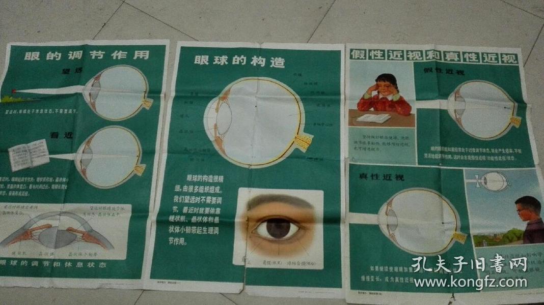 A35老挂图-保护视力预防近视 挂图3张合售(一,三,四)