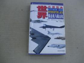 世界武器图典强击机与截击机