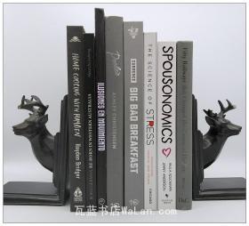 黑白灰咖棕 现代风格书脊 样板房装饰外文真书 样板间装配书架 外文原版书