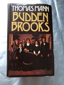 BUDDEN BROOKS《布登波洛克一家》  (精装+护封 私藏 品好)一厚册