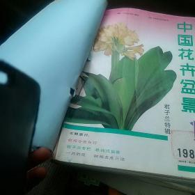 中国花卉与盆景1988年1一12期[代售]馆藏