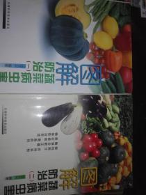 图解蔬菜病虫害防治【一、二】铜板彩印