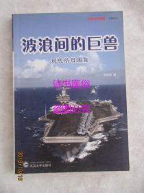 波浪间的巨兽:现代航母图集——经典战史回眸(兵器系列)