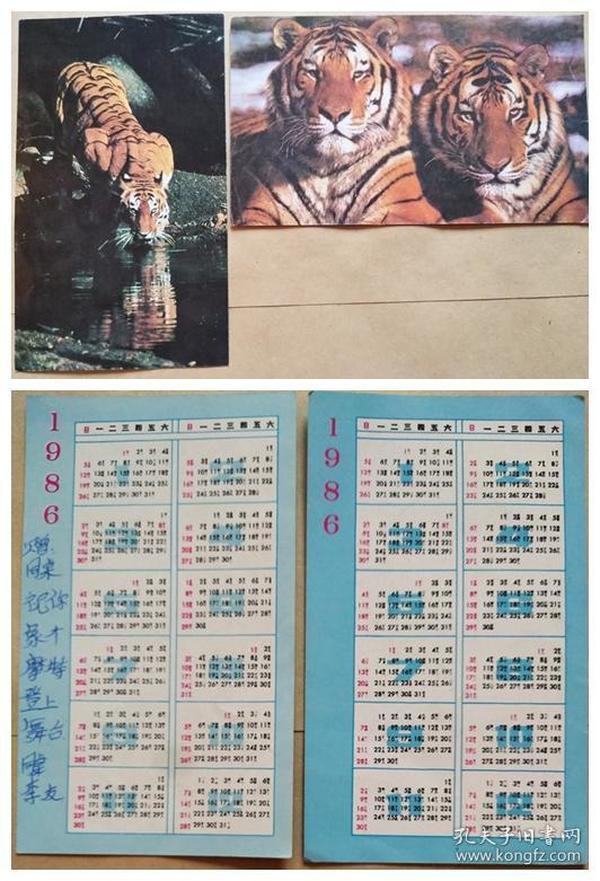 1986年年历卡--东北虎(2张)
