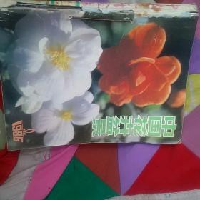 中国花卉盆景1986年1一12期缷7共11本[代售]馆藏