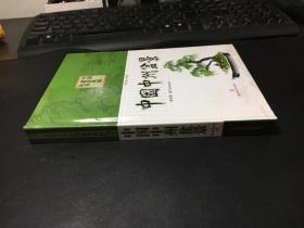 中国盆景风格丛书:中国中州盆景