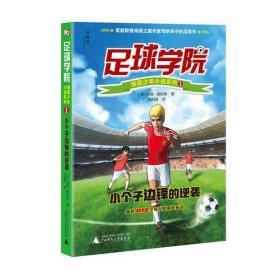 儿童文学:足球学院 1 小个子边锋的逆袭 全6册批